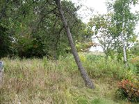 10140 State 64 SW, Motley, MN 56466