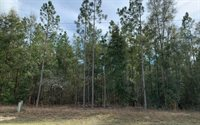 TBD Lot 7 180th Street, Live Oak, FL 32060