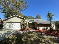 1970 Hidden Lake Drive, Palm Harbor, FL 34683