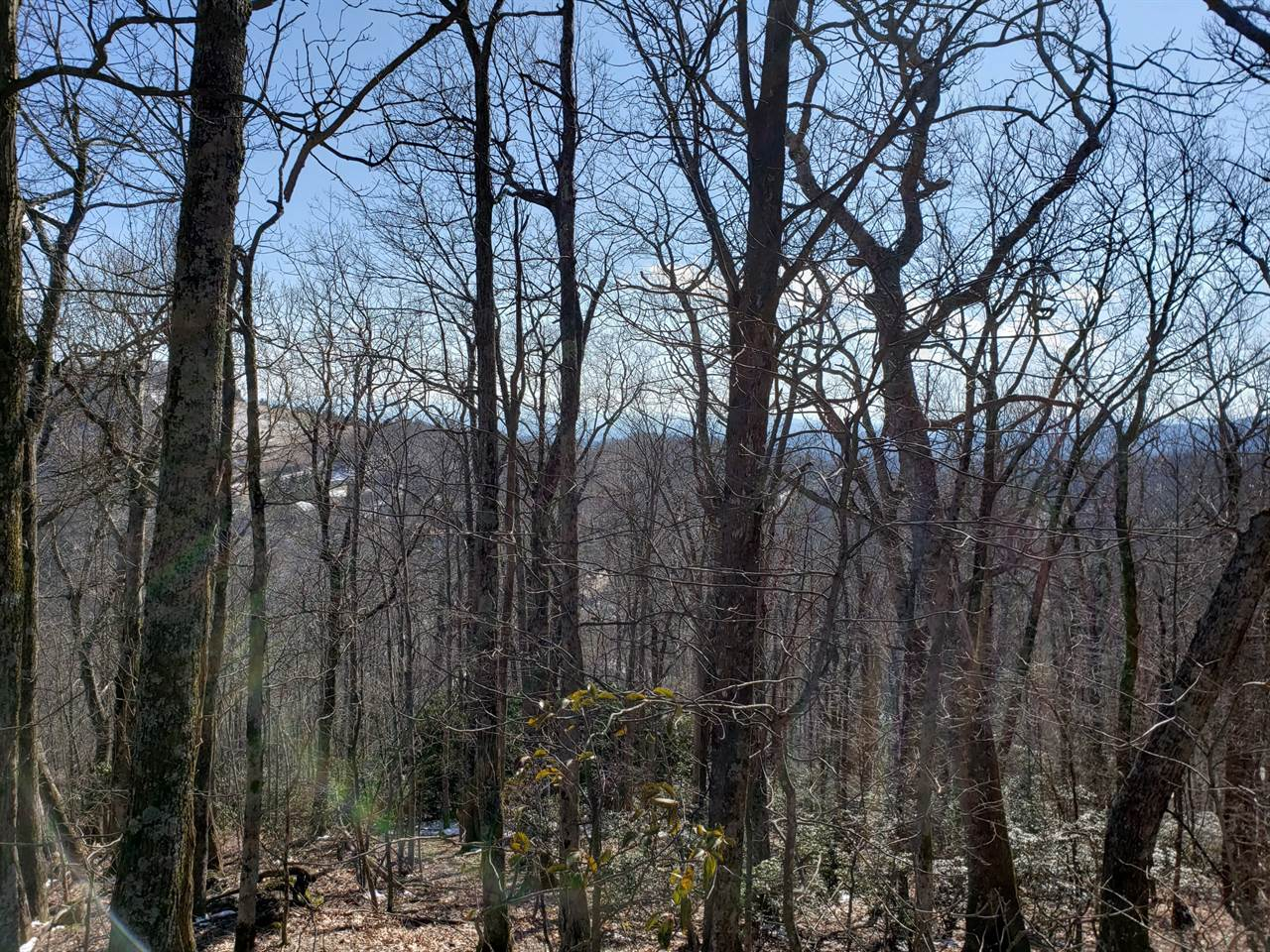 TBD State View Road, Boone, NC 28607