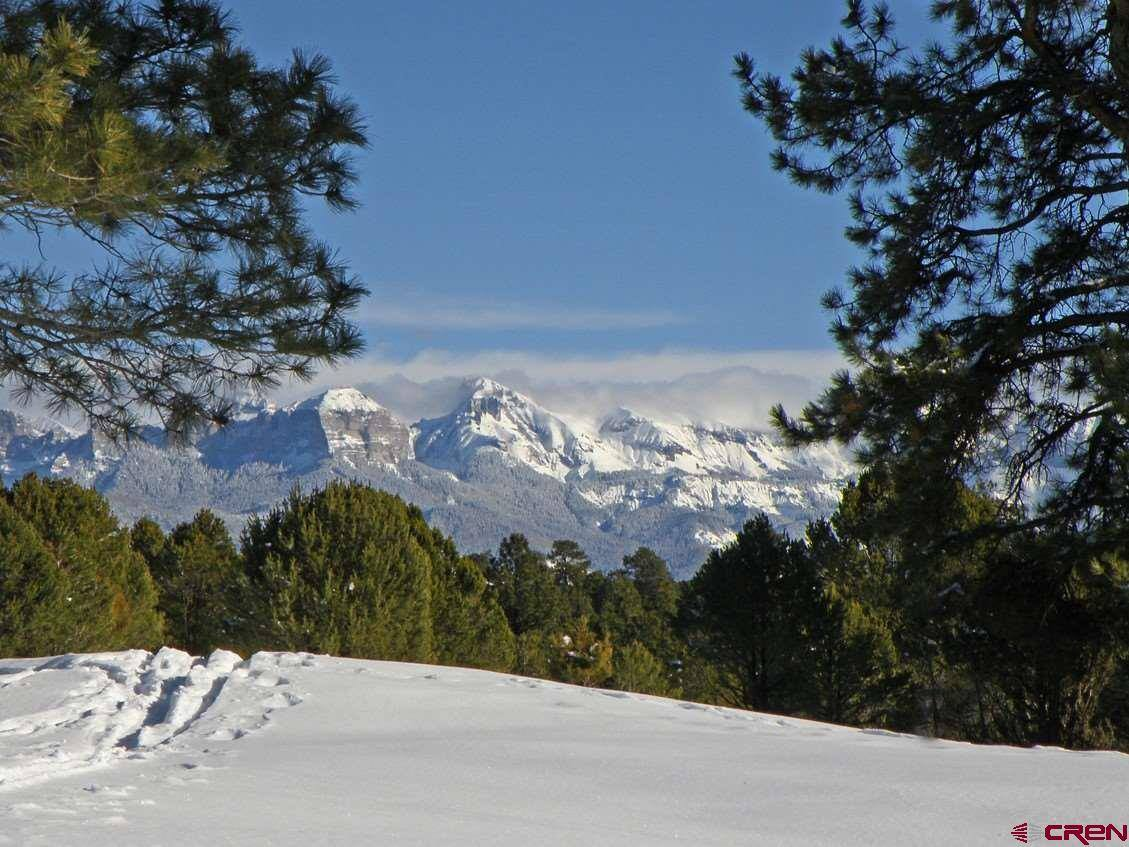 TBD S Badger Trail, Ridgway, CO 81432