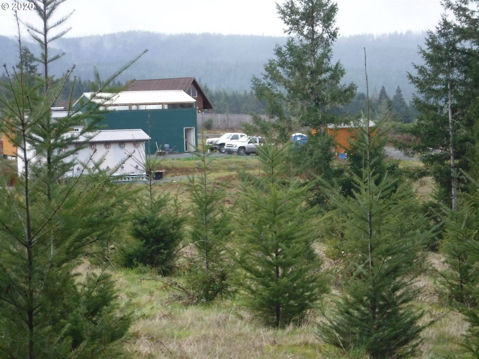224 Dorthea Dr, Camas Valley, OR 97416