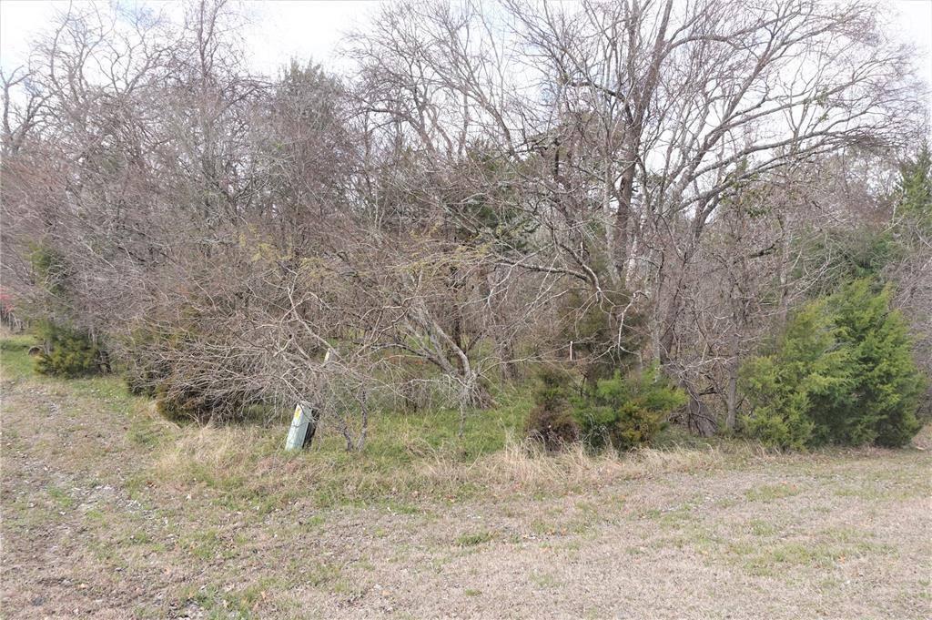 3 Ash Park Drive, Coldspring, TX 77331