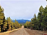 915 Oakbrush Street, Pagosa Springs, CO 81147