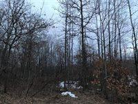 TBD Poquet Drive NW, Birch Lake Township, MN 56452