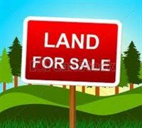 158.47 Acres AMELIA ROAD, Pittsville, WI 54466