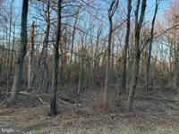 Lot 107, Bow Wood Trail, Winchester, VA 22602
