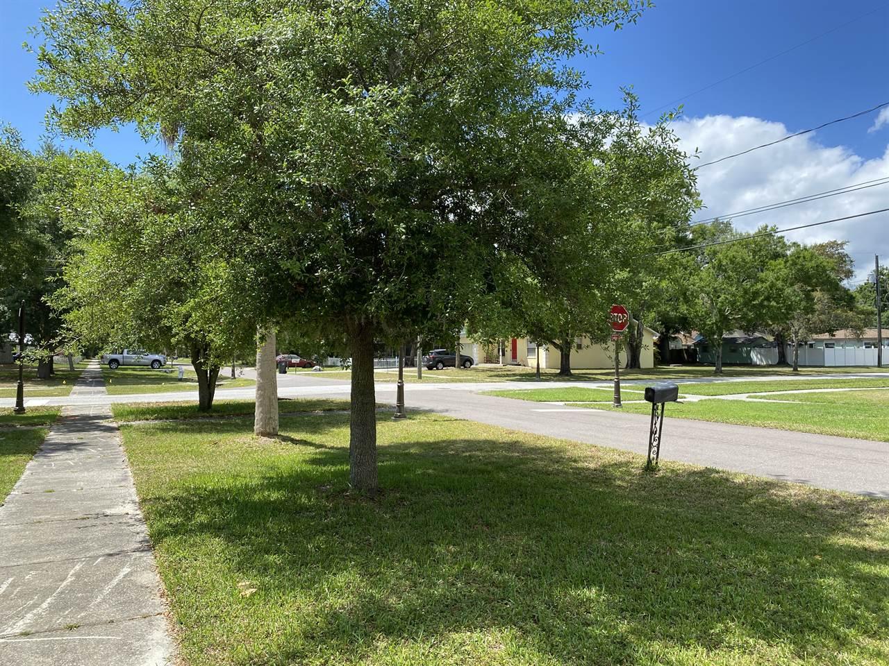 211 Jefferson Avenue South, Oldsmar, FL 34677