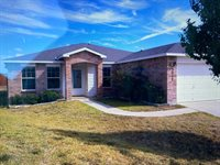 3217 Blackburn Drive, Killeen, TX 76543