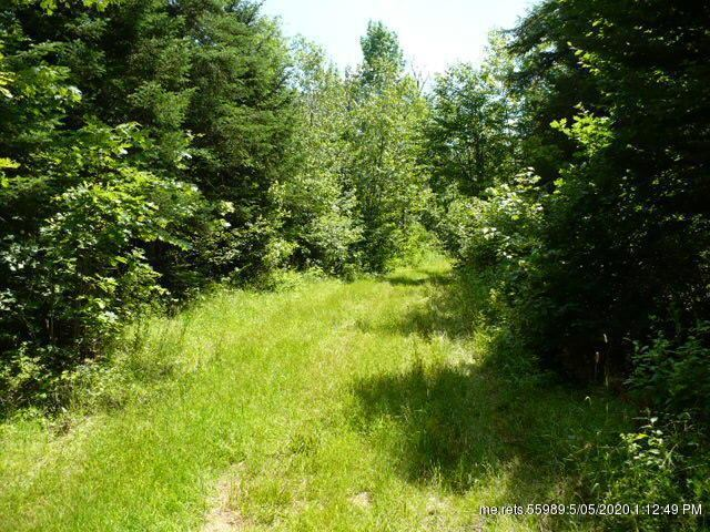 0 McCarty Road, Pittsfield, ME 04967