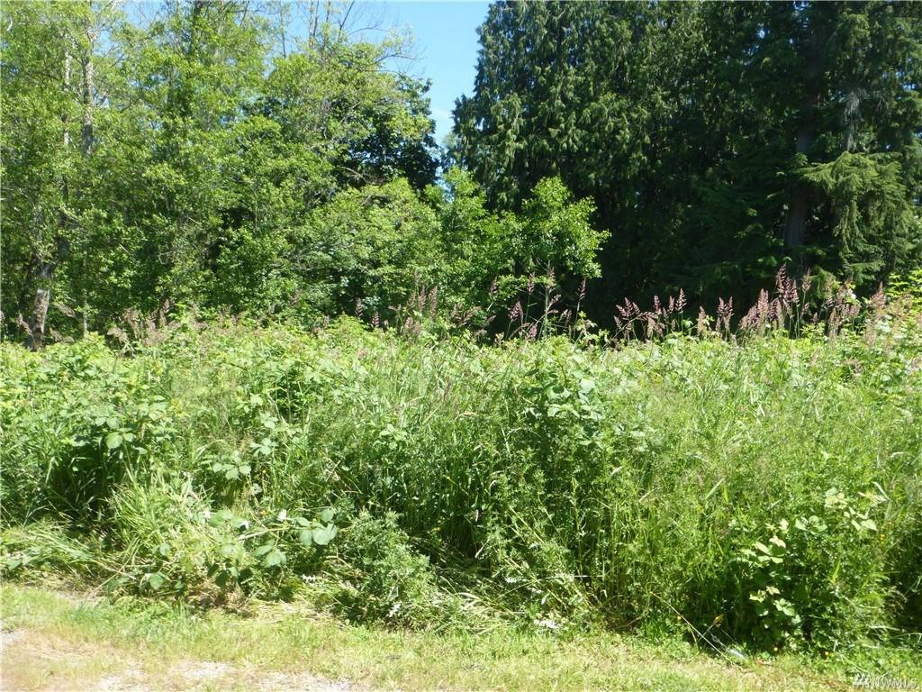 24068 Nookachamp Hills Dr, Mount Vernon, WA 98274