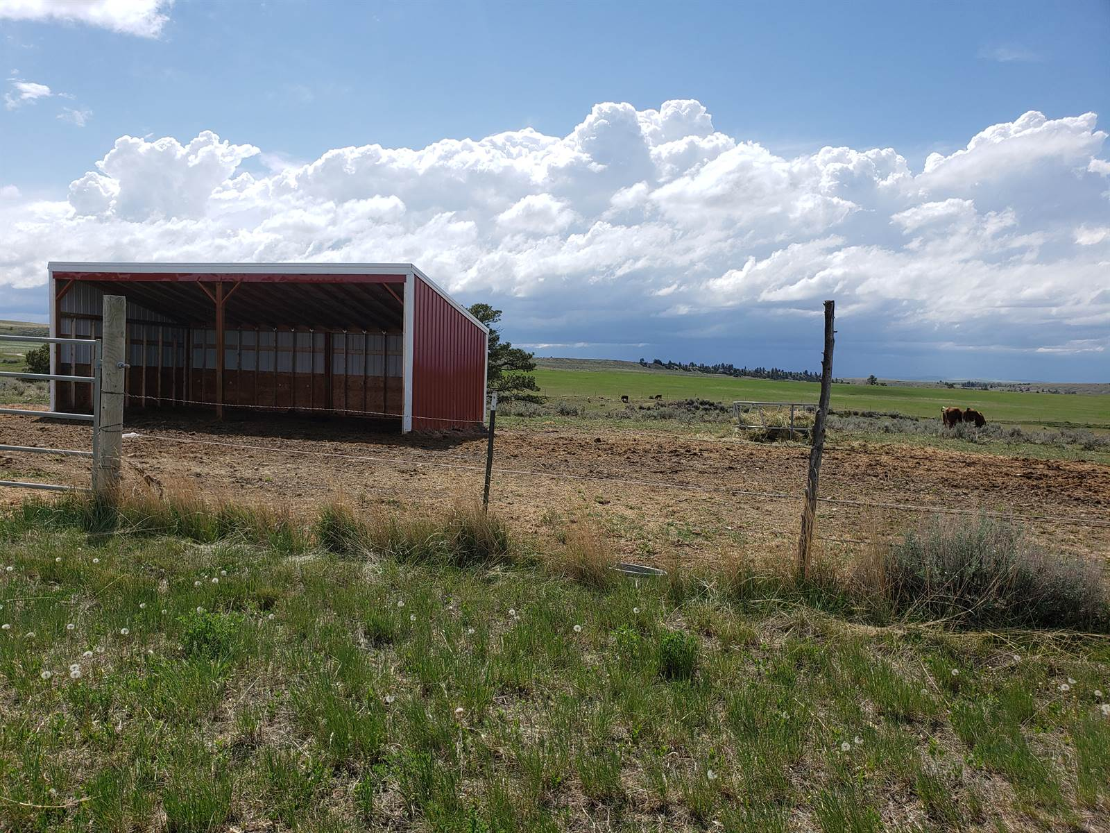 42 Canyon Creek Rd, Molt, MT 59057