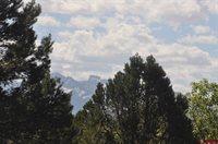 935 Marmot Drive, Ridgway, CO 81432