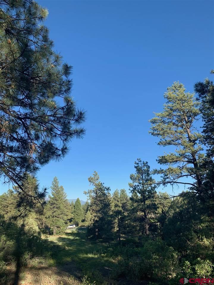 450 Engleman Place, Pagosa Springs, CO 81147