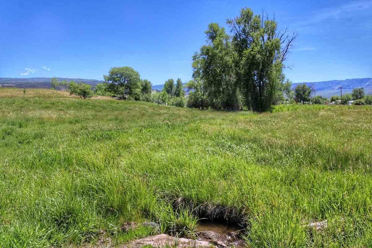 49141 KE 1/2 Road, Mesa, CO 81643