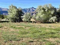 48784 Cool Creek Drive, Mesa, CO 81643
