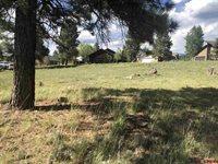 45 La Costa Court, Pagosa Springs, CO 81147