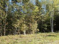 20 Bear Track Road, Tomhegan Township, ME 04478