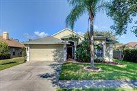 1314 Lake Shore Ranch Drive, Seffner, FL 33584