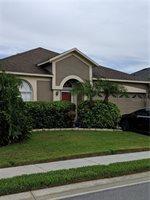 10508 Peppergrass Court, Trinity, FL 34655