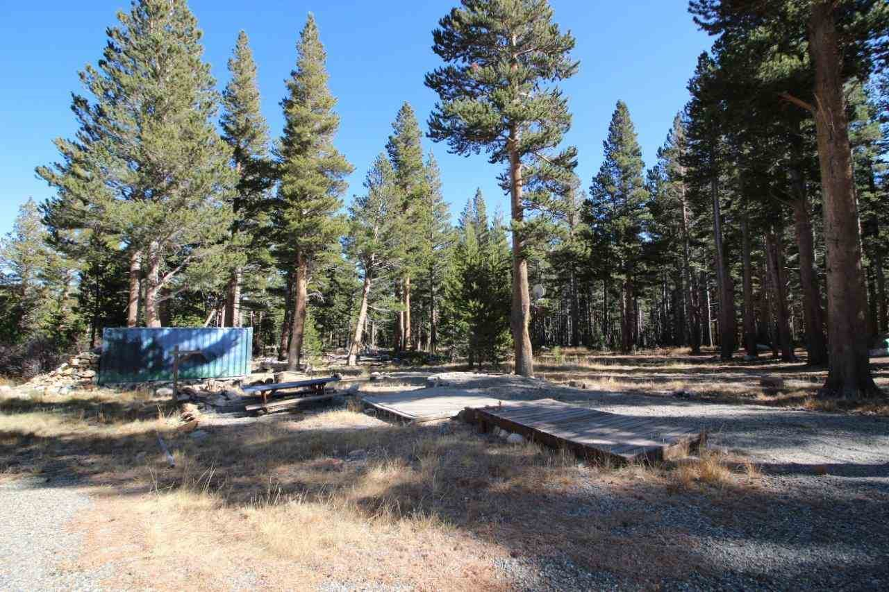 Lots 5 & 6 Glacier Drive, Virginia Lakes, CA 93541