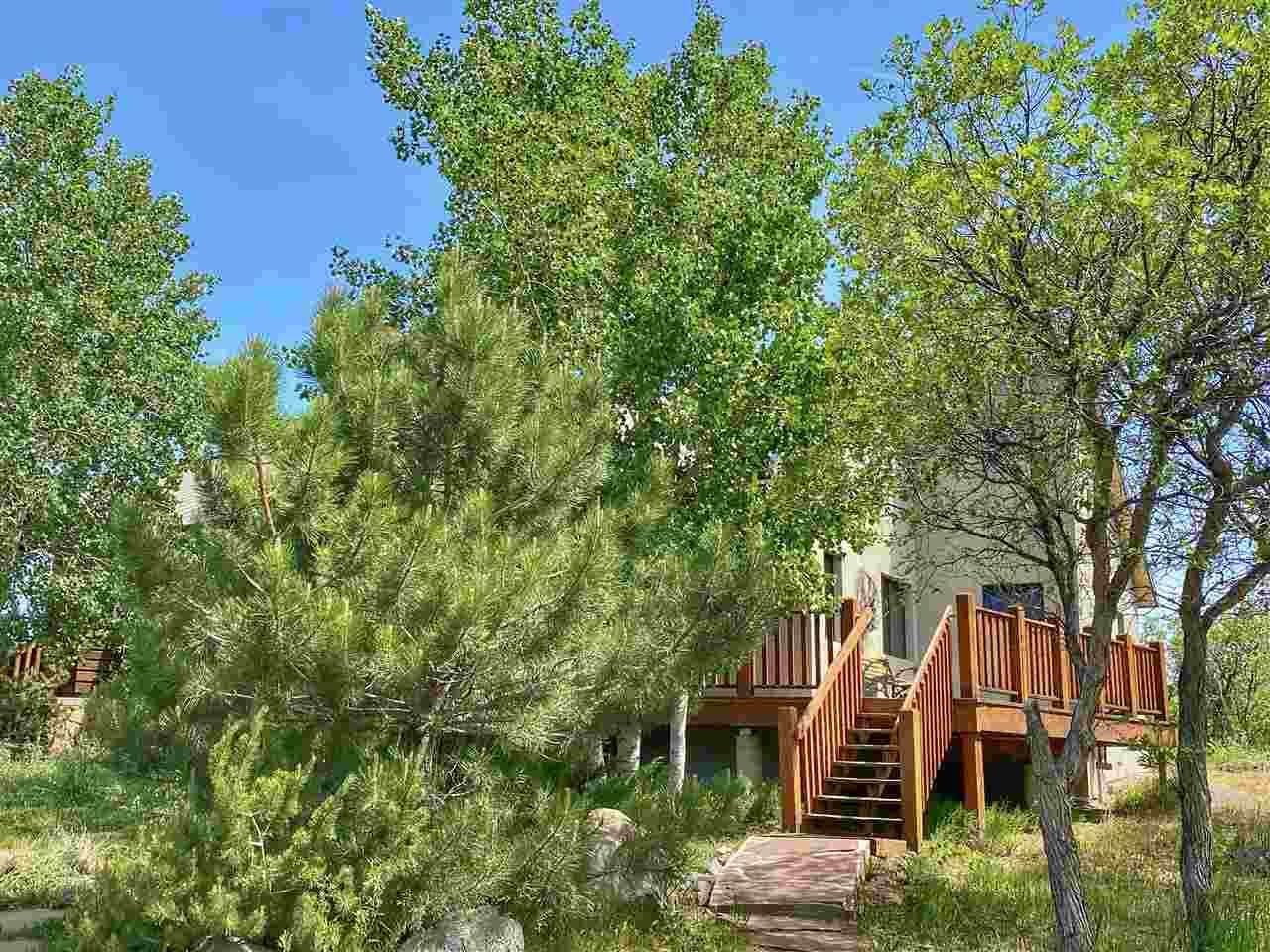 49081 Lela Lane, Mesa, CO 81643