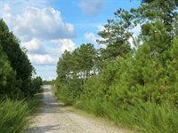 Lot 14, #Expedition Lane, Littleton, NC 27850