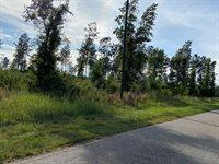 Lot 2, #Roanoke Chapel Road, Littleton, NC 27850