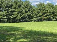 19.34 Acres ARPIN RICHFIELD ROAD, Arpin, WI 54410