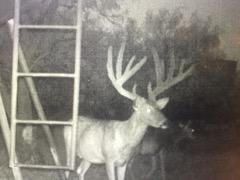 4475 CR 176, Breckenridge, TX 76424
