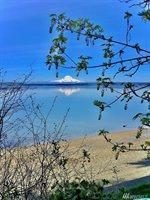 7312, #Puget Beach Rd NE, Olympia, WA 98516