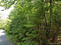 lot 25 Pebble Beach Road, Kineo Township, ME 04478