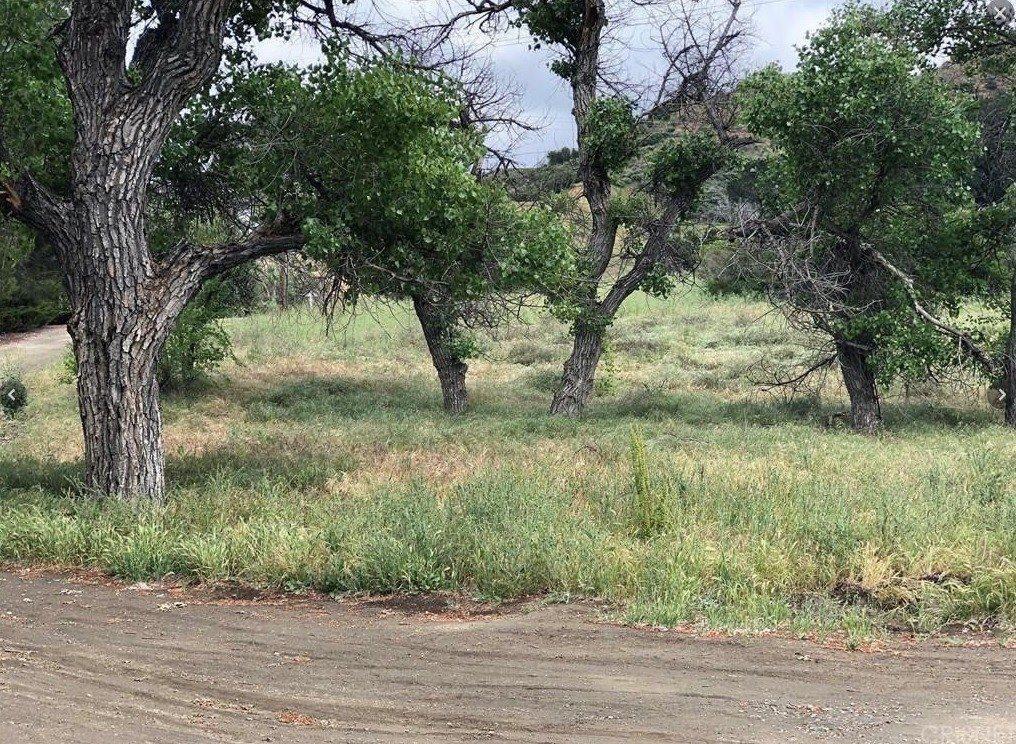 0 Placerita Canyon Rd, Canyon Country, CA 91387