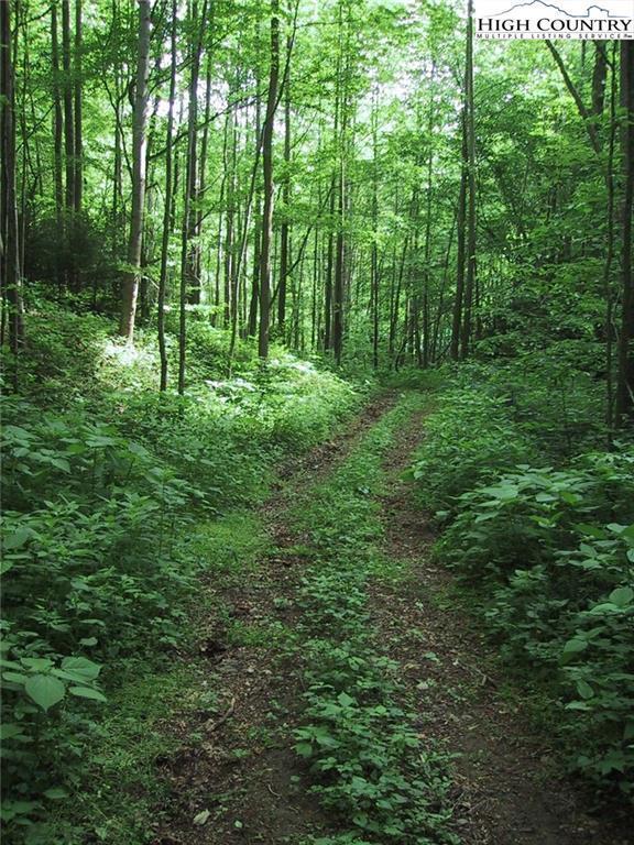 Tbd Jakes Mountain Road, Deep Gap, NC 28618