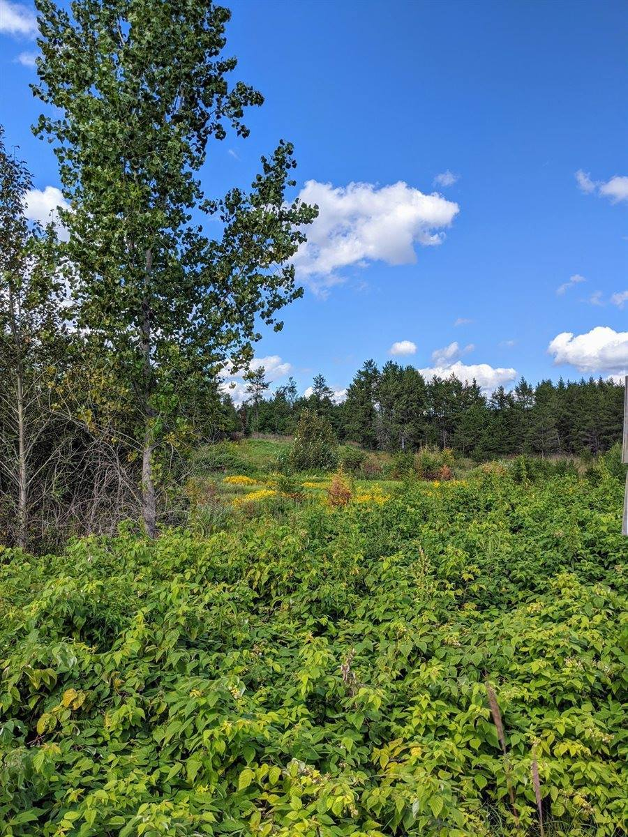 xxx Deer Drive - Parcel C, Sturgeon Lake, MN 55783