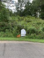 0 Lot 2 Sec 2 Falcon Ridge Drive, #2, Pittsville, VA 24139