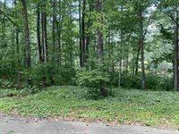 1.5 acres MADELINE LAKE ROAD, Woodruff, WI 54568