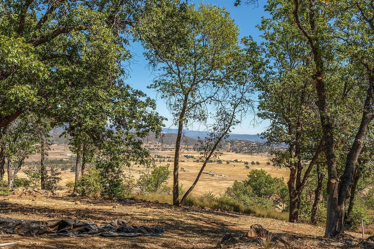 21960 St Helena Creek Road, Middletown, CA 95461