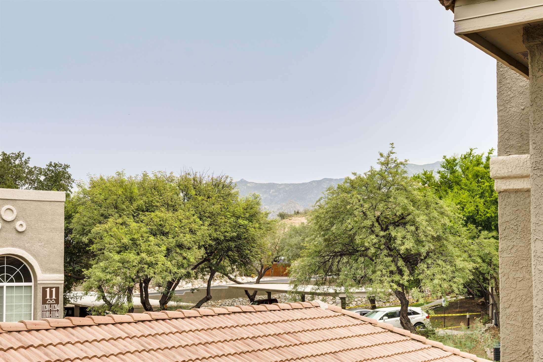 1500 E Pusch Wilderness Dr #13202, Oro Valley, AZ 85737