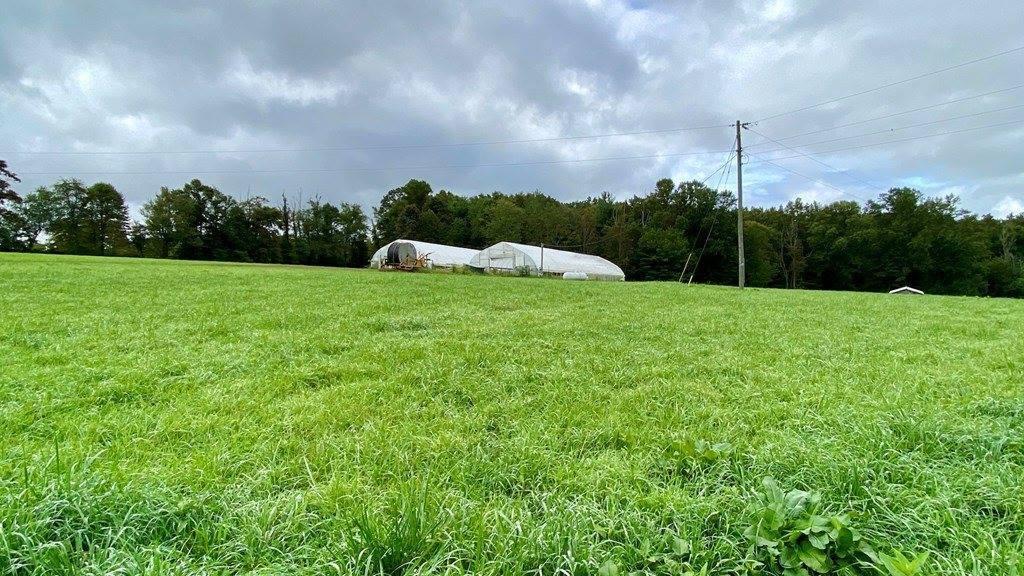 TBD Worrell Memorial Road, Laurel Fork, VA 24352