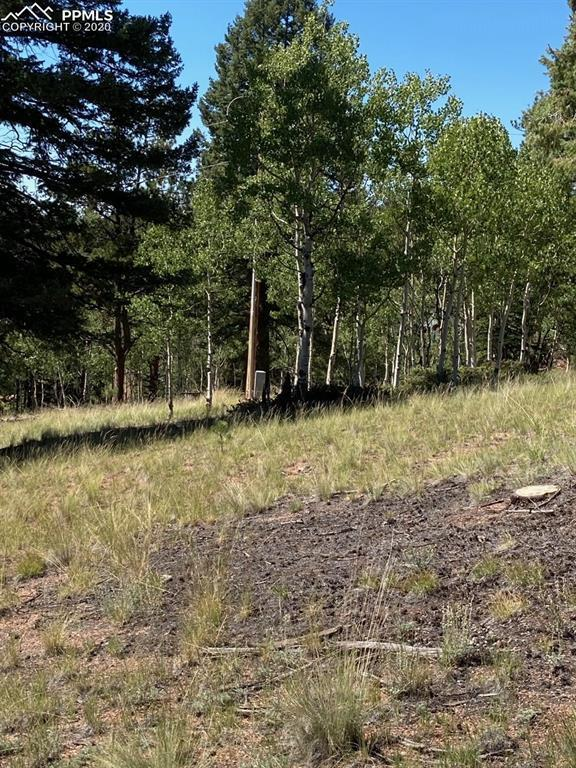 85 West Eldorado Circle, Florissant, CO 80816