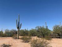 7065 North Featherstone Trail, Tucson, AZ 85743