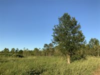TBD Egan Hwy (2.31 Acres), Crowley, LA 70526
