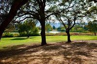584 Springhouse Road, Angels Camp, CA 95222