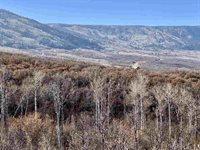 50275 Bear Run Court, Mesa, CO 81643