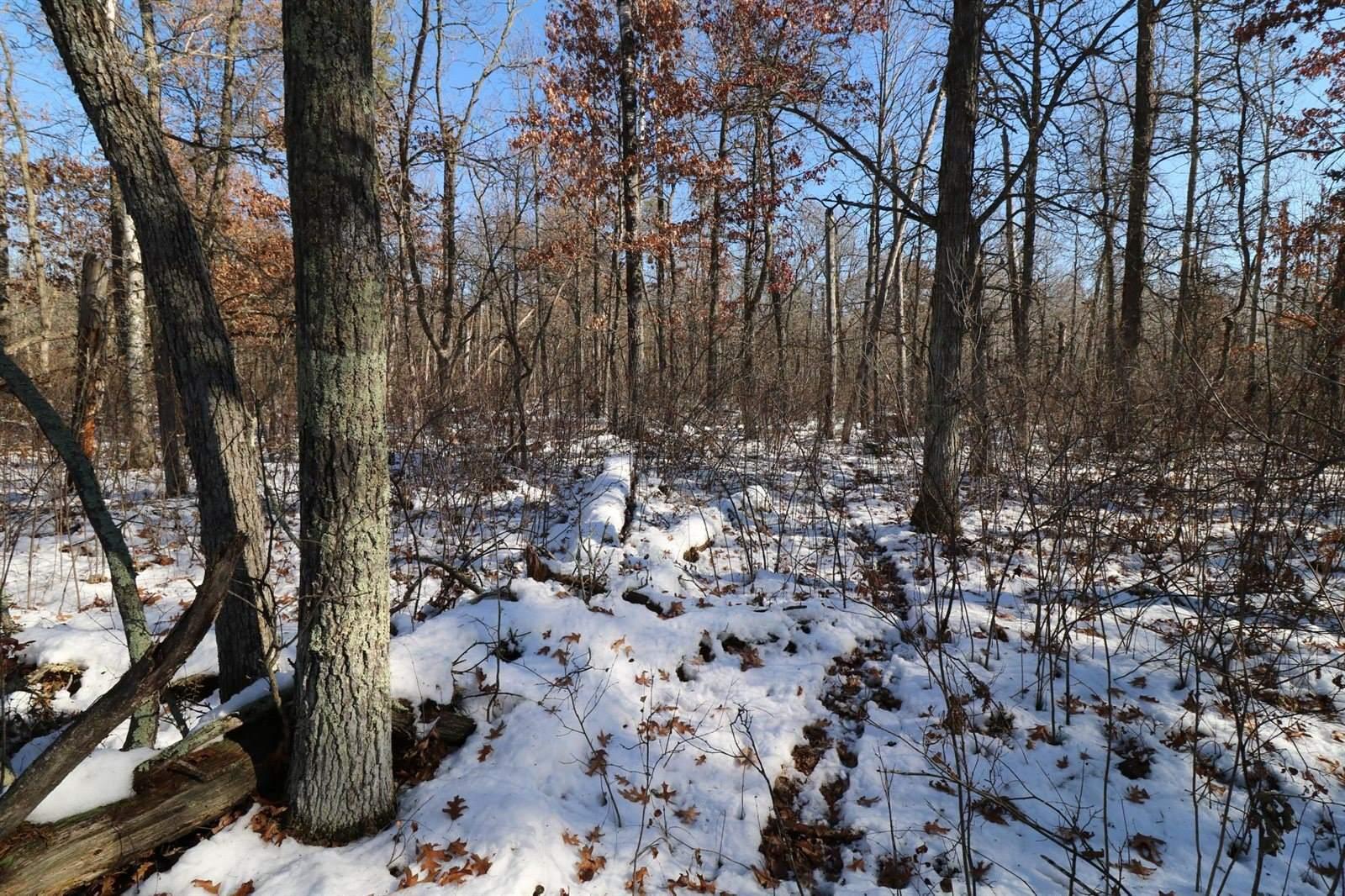 Lot 5 Blk 1 Duckwood Trail, Crosslake, MN 56442