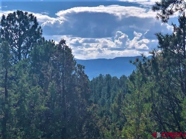 TBD lot 12 Cottontail Lane, Ridgway, CO 81432