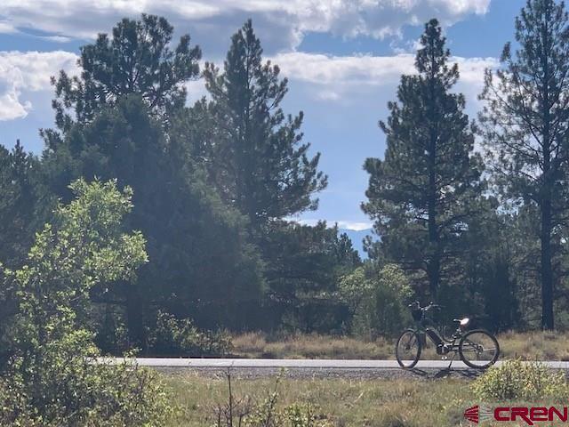 TBD N Badger Trail, Ridgway, CO 81432