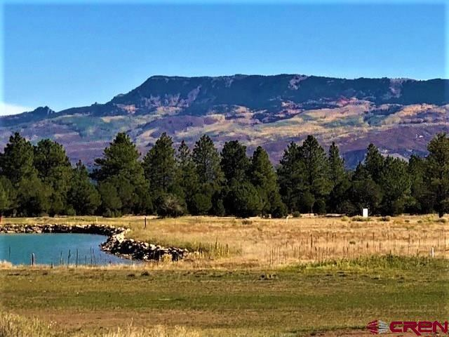 TBD N Badger Trail, Ridgway, CO 81432