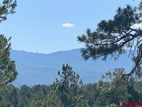TBD Lot 11 Cottontail Lane, Ridgway, CO 81432